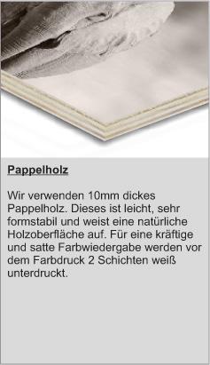 Beschreibung-Pappel-neu