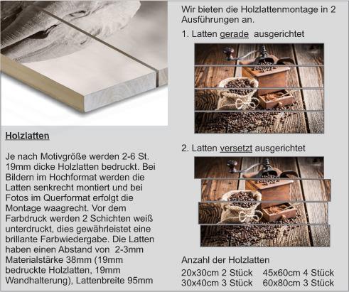 Beschreibung-Holzlatten-neu5814769b2f9b3