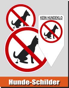kategorie-hunde-info
